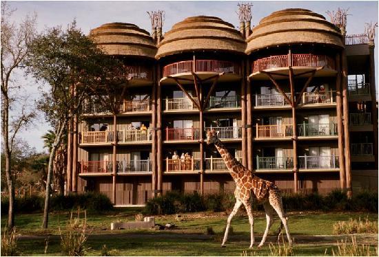 Disney's Animal Kingdom Lodge to Debut New 'Sense of Africa'Tour