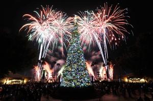 Epcot - Holiday Illuminations:Christmas Tree