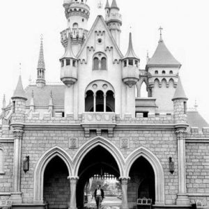 Walt - DL - Castle