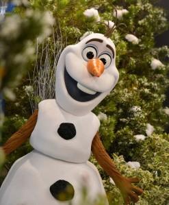 Olaf Meet and Greet