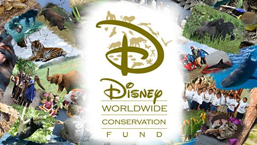 Disney Conservation Fund Celebrates 20-Year Anniversary by Unveiling New Initiative to Protect thePlanet