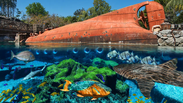 Typhoon Lagoon's Shark Reef to Close Permanently in October