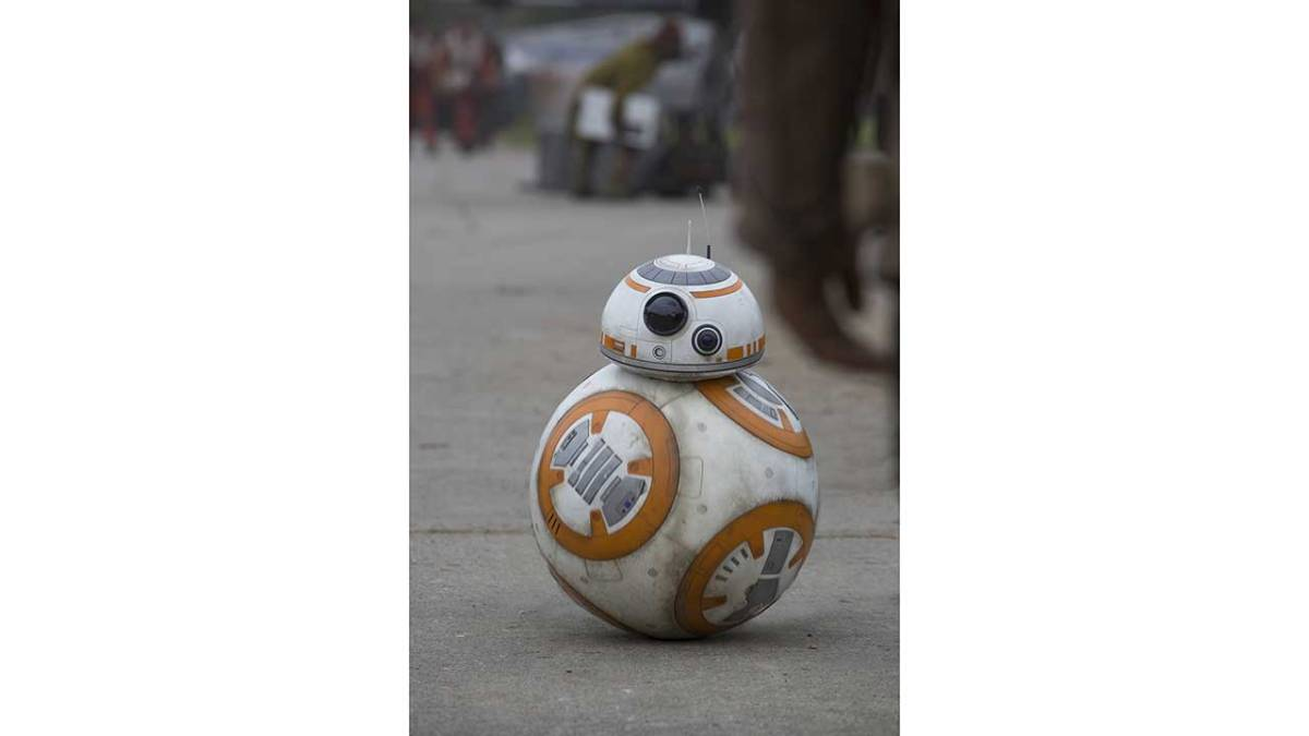 BB-8 To Greet Guests at Disney's Hollywood Studios This Spring