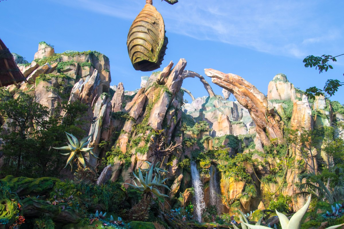 Disney's Animal Kingdom Offering New 'Ultimate Nights of Adventure VIP Tour'