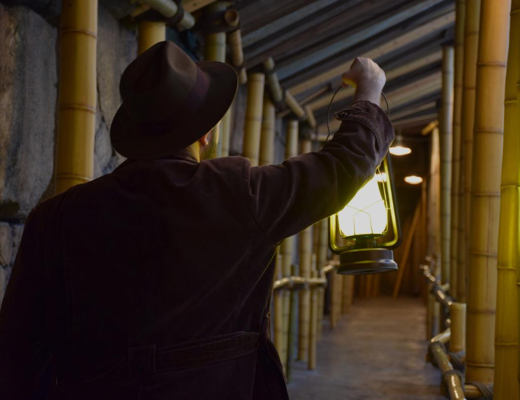 Disneyland Offering Indiana Jones Adventure Queue Tours During Rehab