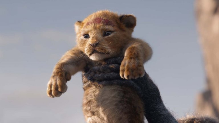 "Disney Announces 'Lion King'-Inspired ""Protect the Pride"" Global Conservation Campaign"