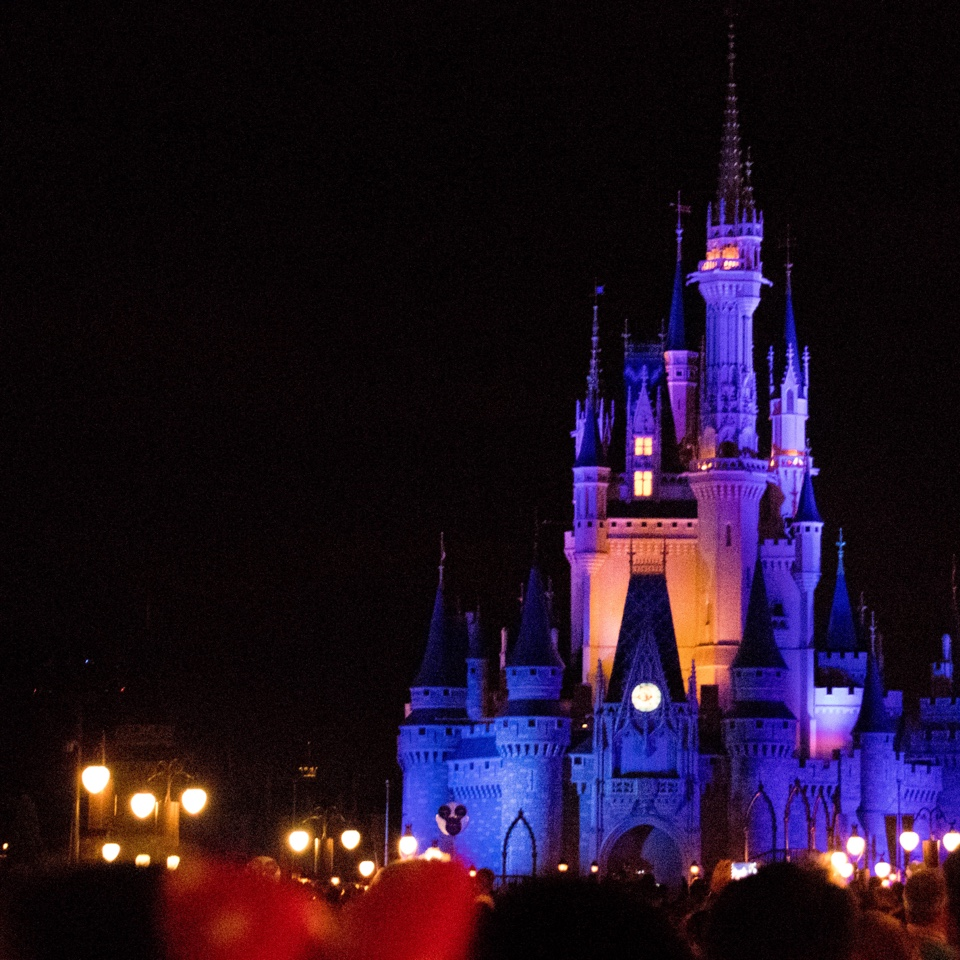 Walt Disney World Sets Opening Dates